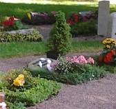 Grabmal Inschrift, Grabplatte kaufen, Grabpflege